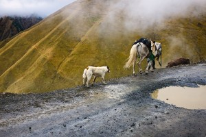 Caucasus by Mike Bourgault