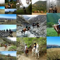 Reiten in Georgien Collage